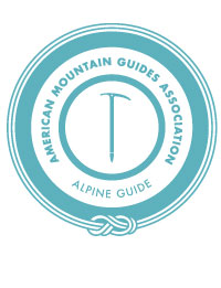 Alpine Guide Logo