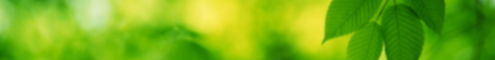 AMGA_GovernancePolicy_Banner