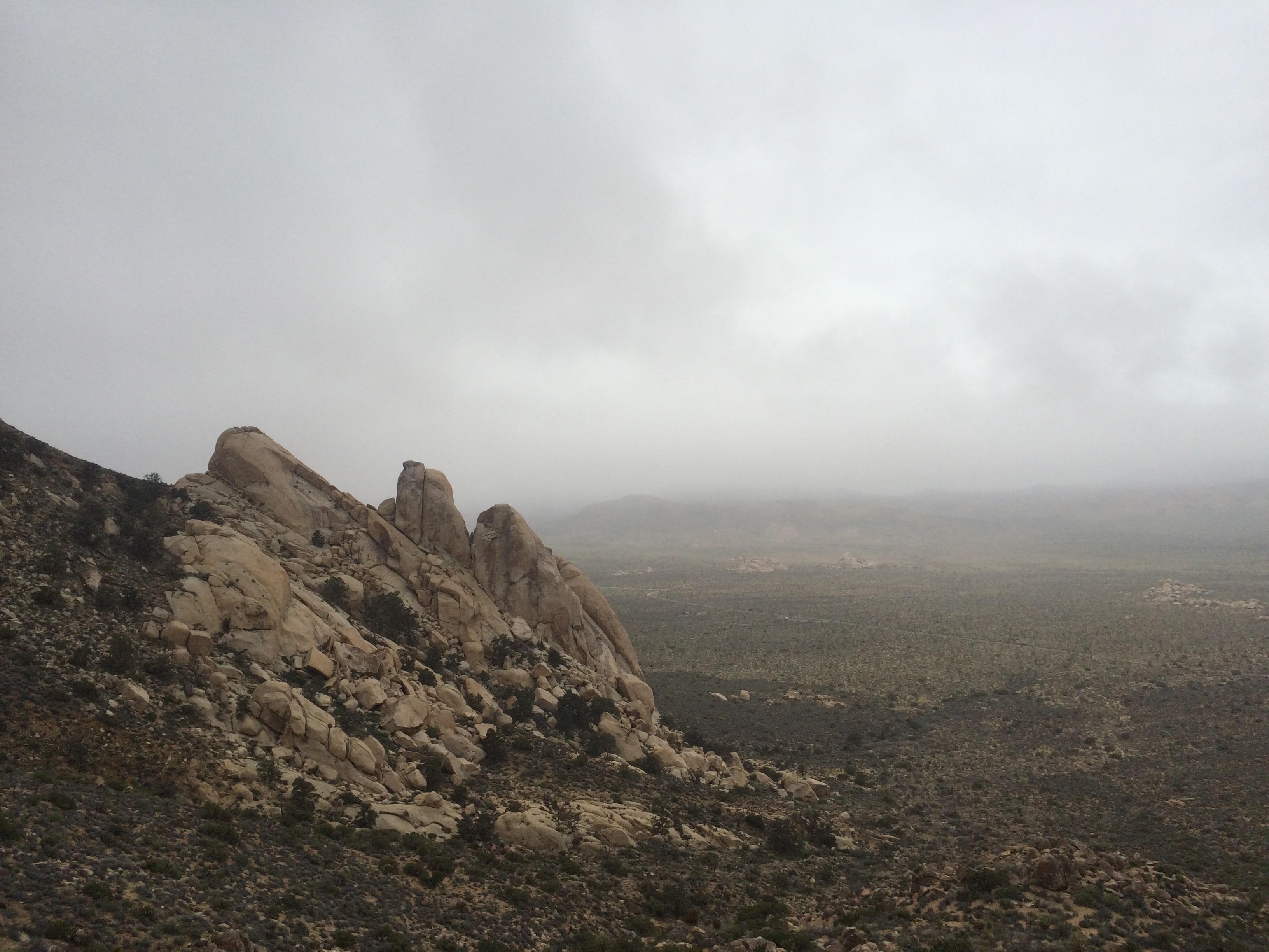 Saddle Rocks-Joshua Tree