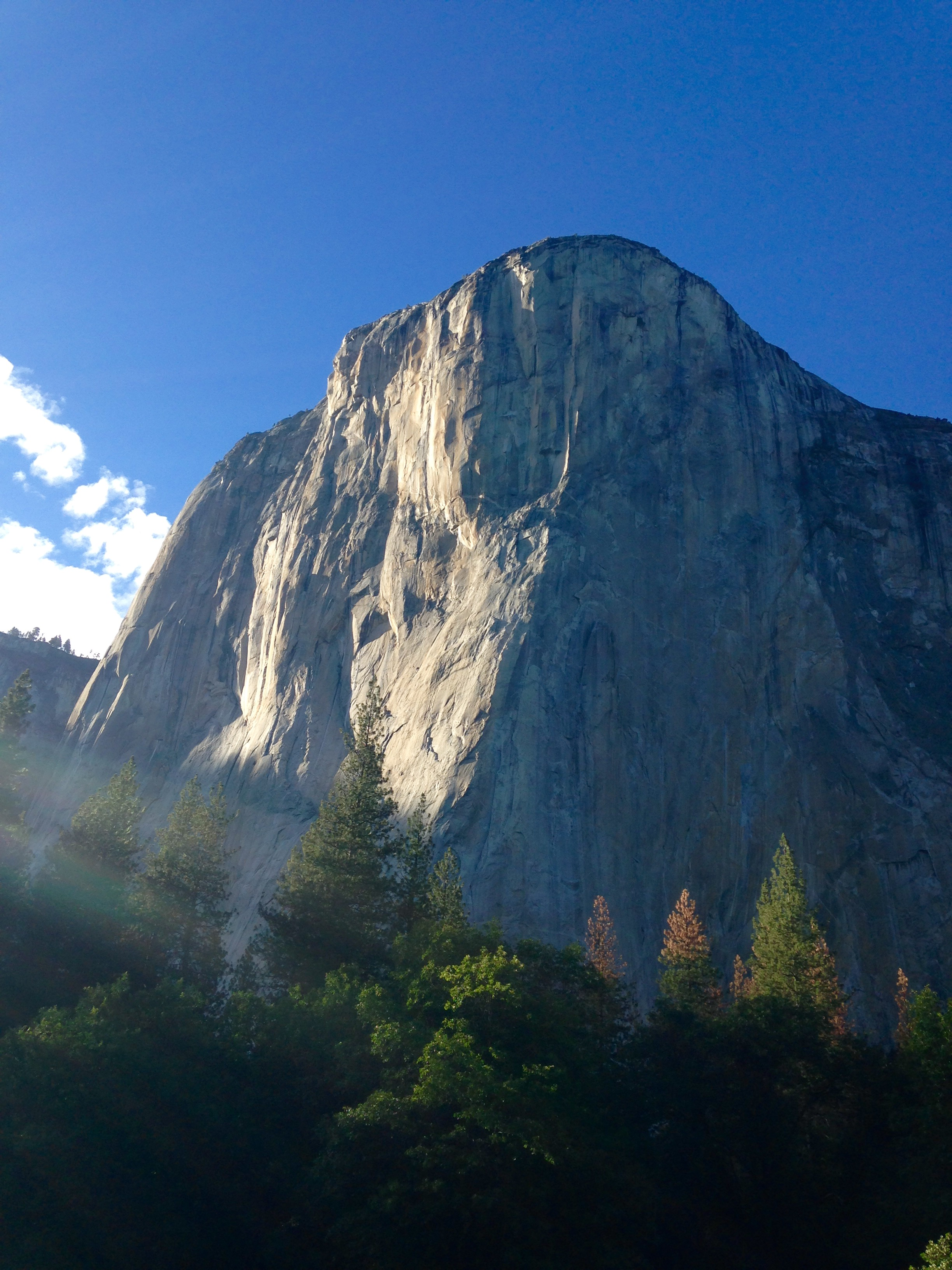 ea576ac326 Possible Yosemite Guiding Opportunities