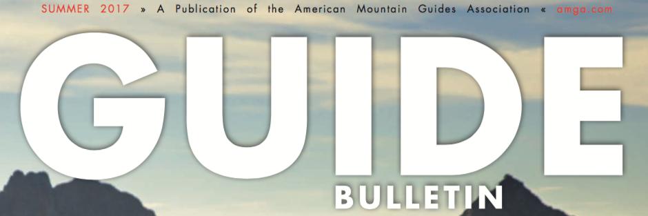 guide-bulletin-banner