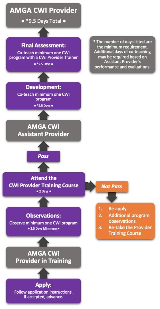 cwi-provider-flowchart